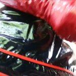 Watch Porn Stream Online – HJ Goddess TEASE – HJ Latex red glove of nurse (MP4, HD, 1280×720)