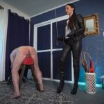 Watch Porn Stream Online – Stella Liberty – Leather Caning (MP4, UltraHD/4K, 3840×2160)