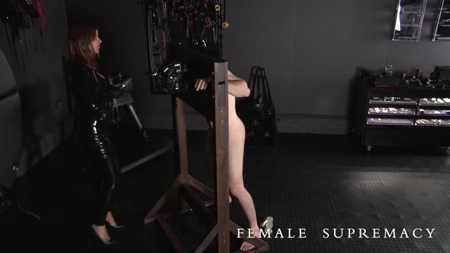 domination streams Female
