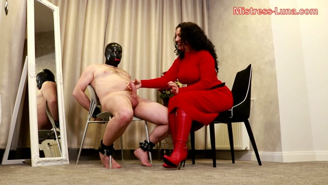 Ruined_again_-_Mistress_Luna.mp4.00013.jpg