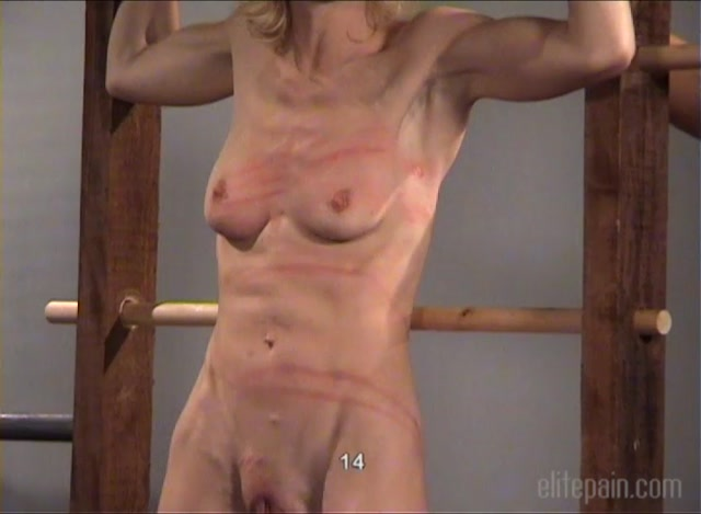 ElitePain_presents_The_Competition_1__Remastered_.mp4.00012.jpg
