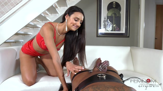 Emasculated_in_Chastity_-_Femdom_Empire_-_Eliza_Ibarra.mp4.00013.jpg