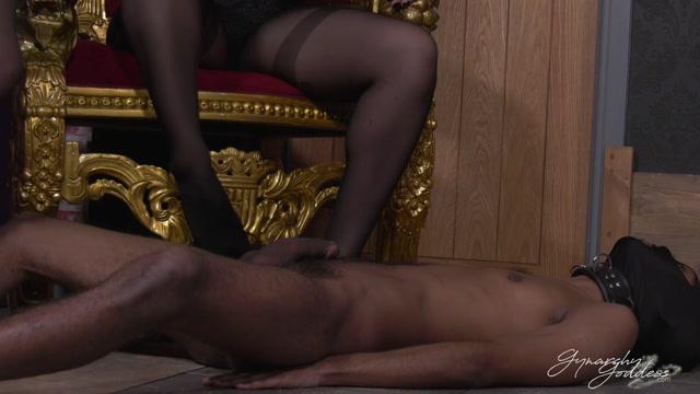 Goddess_Gynarchy__Goddess_Serena__Mistress_Paris_-_Manhood_Annihilation.mp4.00000.jpg