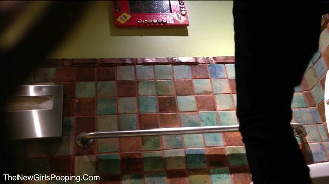 Voyeur_-_Fiesta_toilet.mp4.00012.jpg