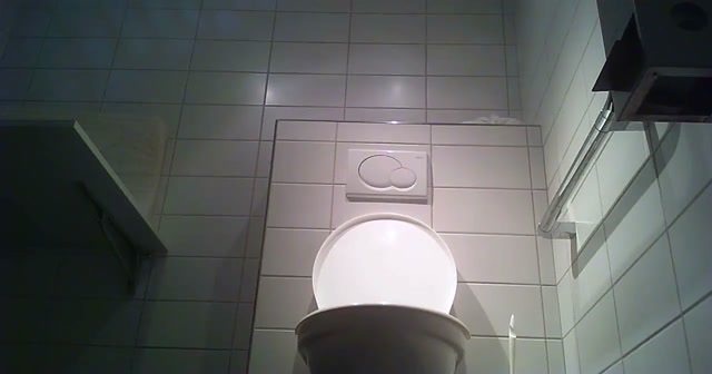 Voyeur_-_Swiss_Toilet_9.mp4.00008.jpg